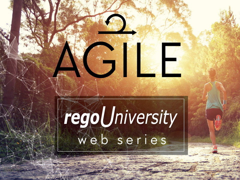 Finding Early Success with Agile? Now Learn Best Practices for Managing, Scaling, and having Agile Coexist with Waterfall