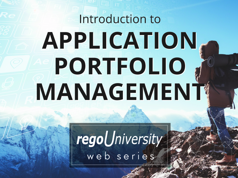 An Introduction to Application Portfolio Management