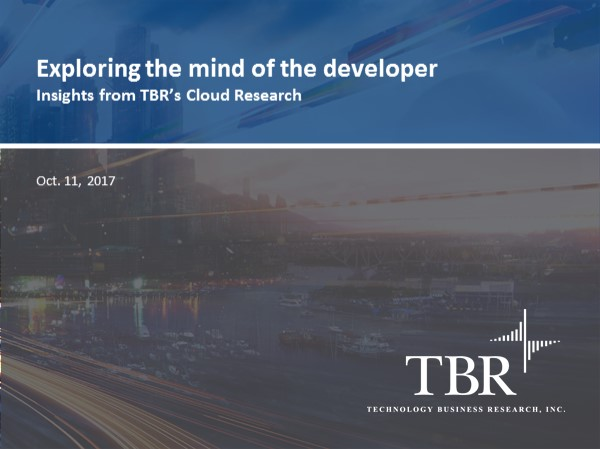 Exploring the mind of the developer