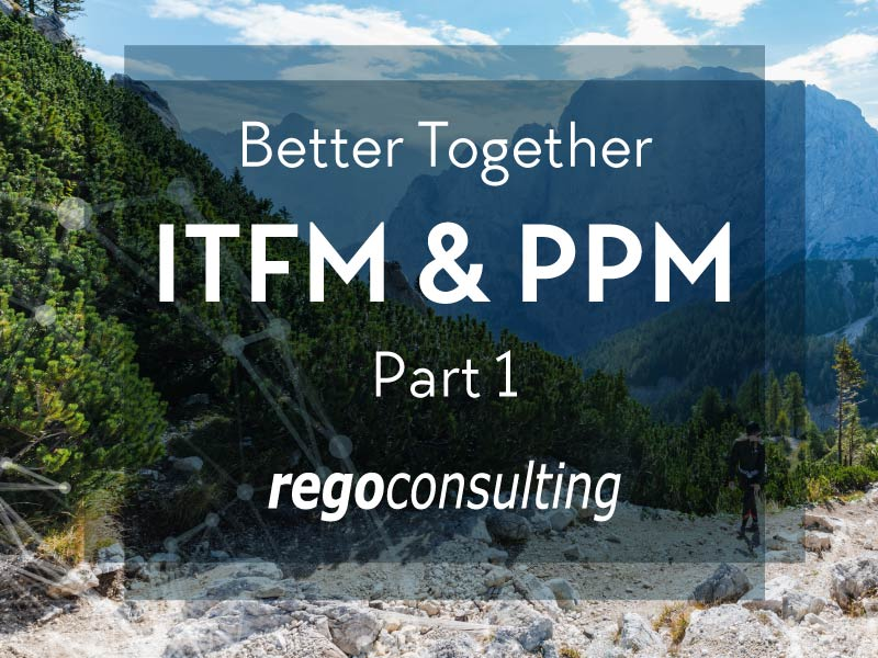 Better Together—IT Financial Management and Project Portfolio Management