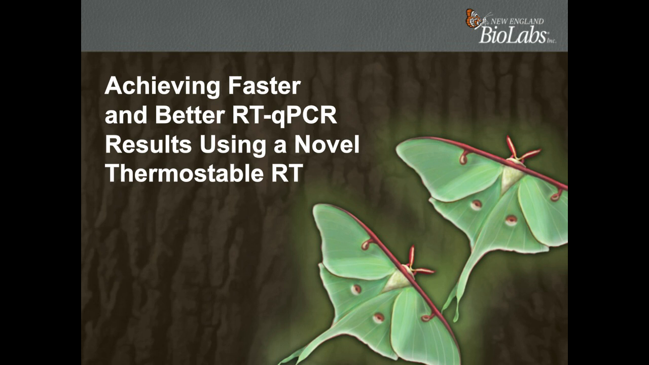 Achieve Faster and Better RT-qPCR Results Using a Novel Thermostable Reverse Transcriptase