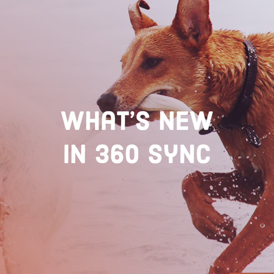 Eliminate Double Entry like a Champ: What's New with 360Sync