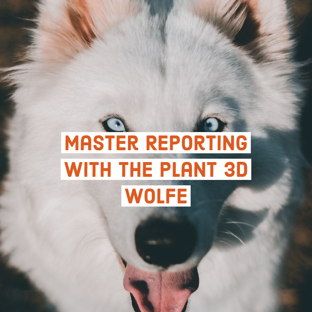 Master Reporting with The Plant 3D Wolfe